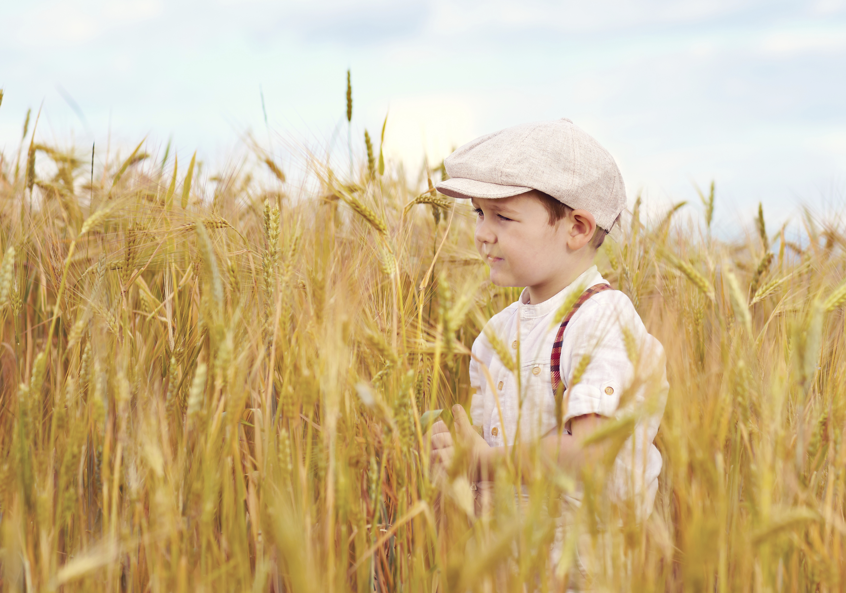cute boy walking the wheat field